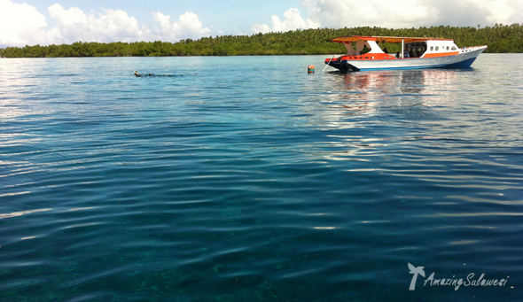 bunaken-marine-park-sulawesi-indonesia-22