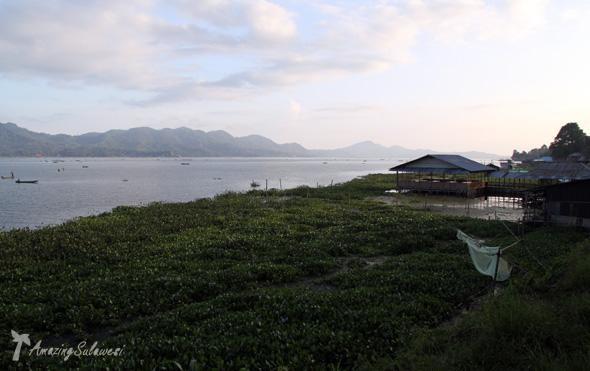 lake-tondano-tomohon-sulawesi-1