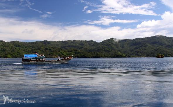 lembeh-island-sulawesi-indonesia-16