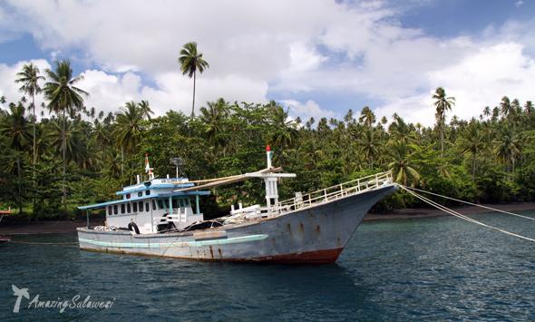 lembeh-island-sulawesi-indonesia-20