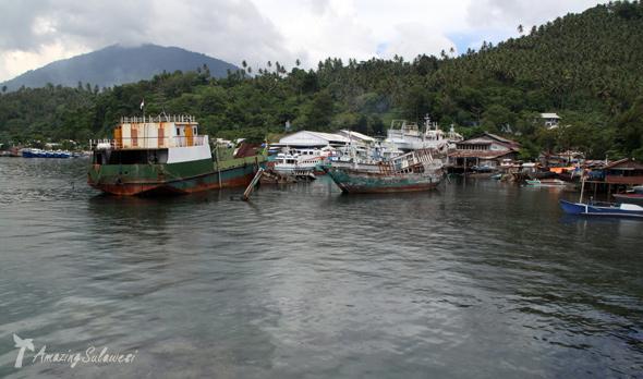 lembeh-island-sulawesi-indonesia-24