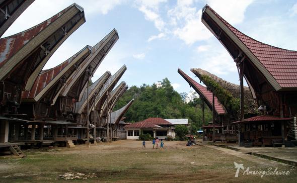 sulawesi-island-indonesia-23