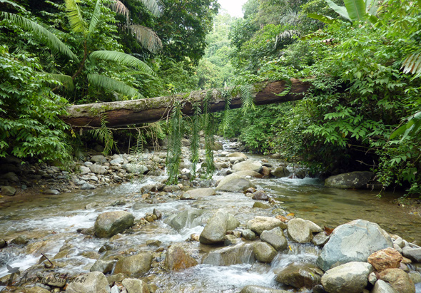 sulawesi-island-indonesia-27