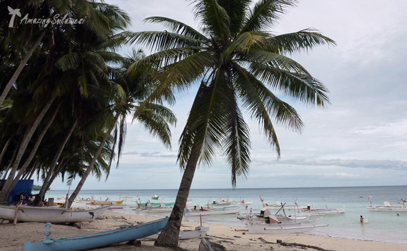 sulawesi-island-indonesia-37