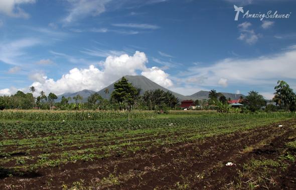 tomohon-sulawesi-indonesia-7
