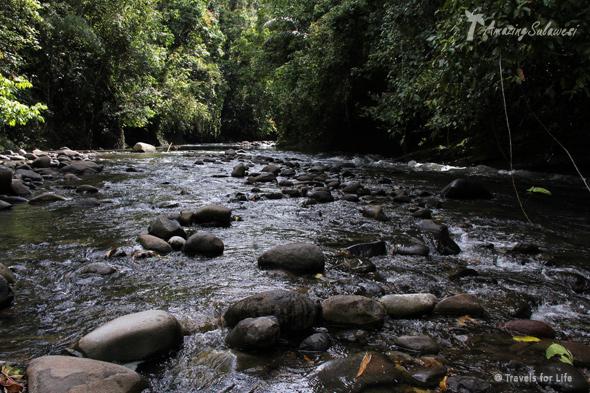 top10-sulawesi-bogani-nani-wartabone-national-park