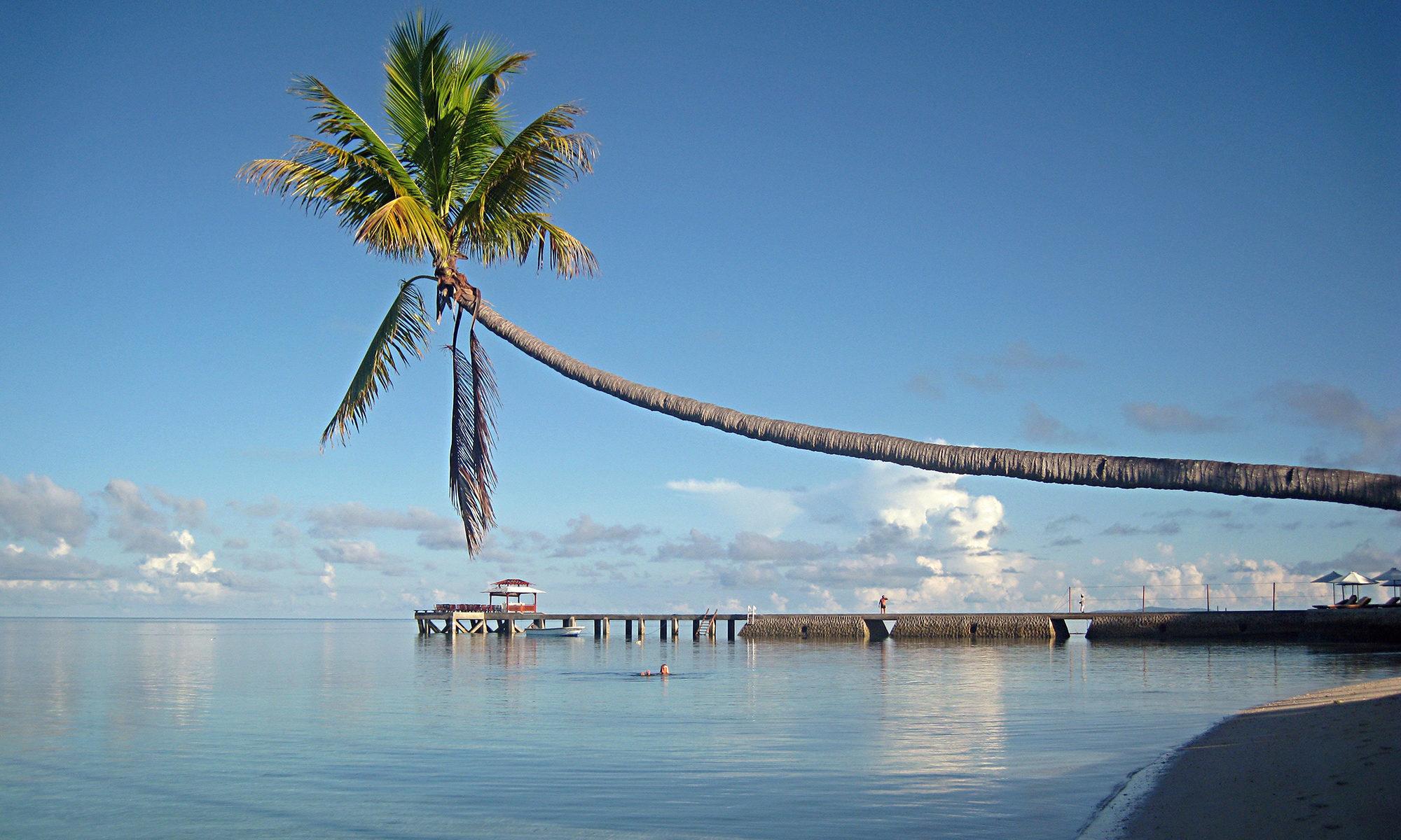 Amazing Sulawesi